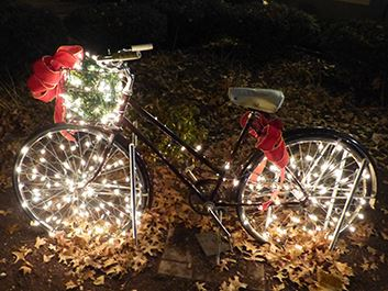 Holiday Lights Bicycle Grahams Chocolates