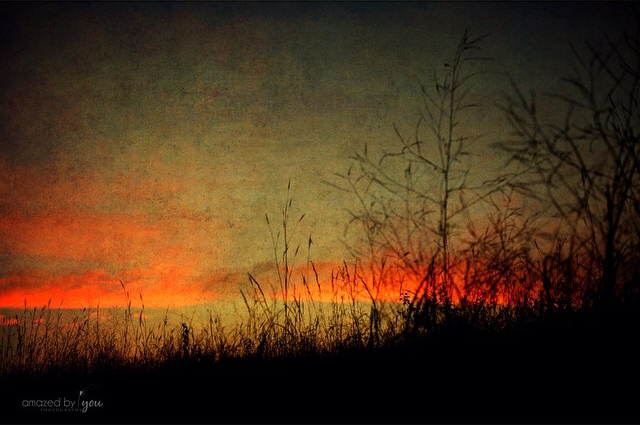 Peck Farm Sunset - Sue Braunsky - Amazed by You Photography