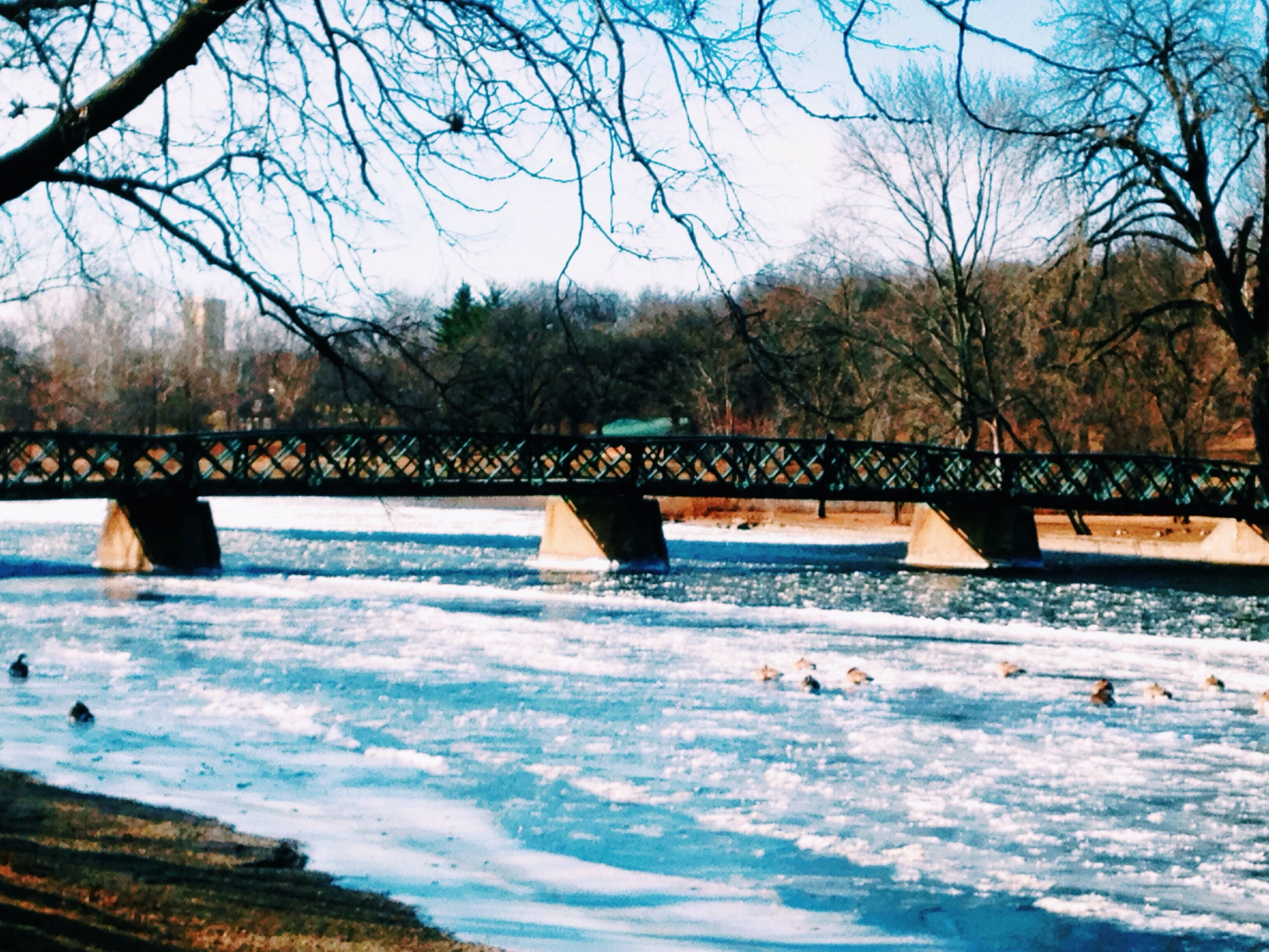 Frozen Fox River - Karen Muehlfelt