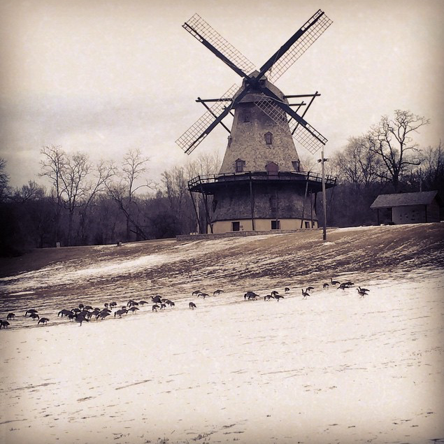 The Fabyan Windmill - Katie Klein