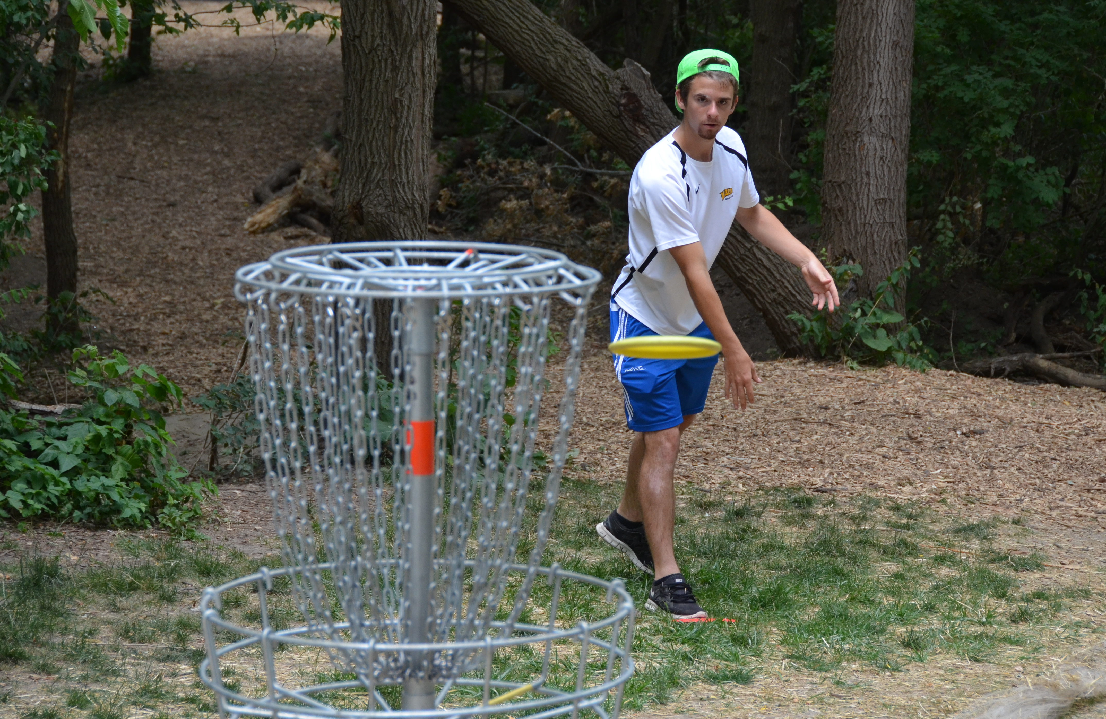 Links Disc Golf Wheeler Park Ted Gates 2